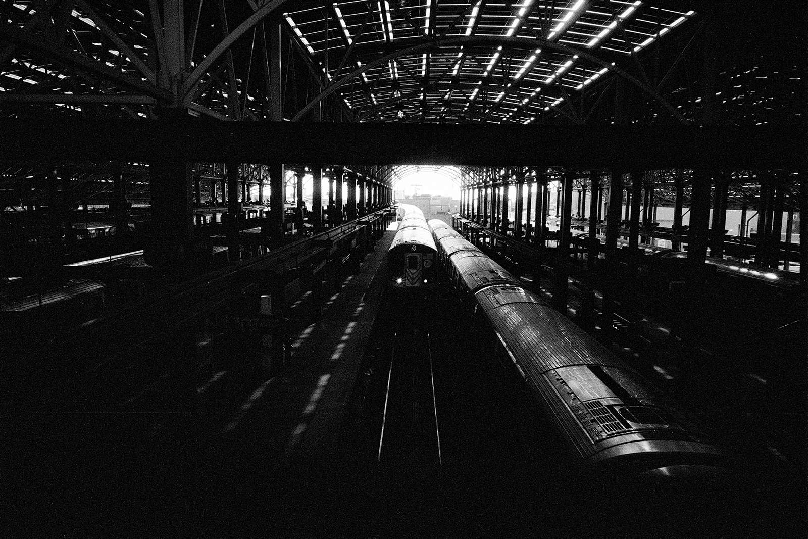 © Federico Arcangeli - 703